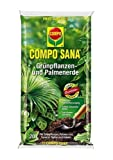 COMPO SANA Grünpflanzen- und Palmenerde 20 l