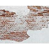 Fototapete Steinwand 396 x 280 cm Vlies Wand Tapete Wohnzimmer Schlafzimmer Büro Flur Dekoration Wandbilder XXL Moderne Wanddeko 100% MADE IN GERMANY Runa Tapeten 9083012a