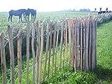 Pflanzenfuchs Staketenzaun aus Kastanienholz - Handw. Qualitätsarbeit - Lattenabstand 8cm - Verschiedene Größen (60x460cm)