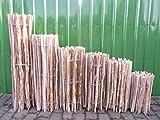 Staketenzaun Lärche in 12 verschiedenen Größen 5 m (500 cm) (120 x 500 cm (Lattenabstand: 3-5 cm))