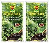 Compo SANA Grünpflanzen- und Palmenerde mit 8 Wochen Dünger für alle Zimmer- und Balkonpflanzen sowie Palmen und Farne, Kultursubstrat, 40 Liter