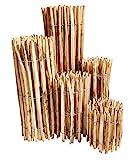 Staketenzaun Haselnuss - 60 x 500 cm (Lattenabstand 3-5 cm) - Roll-Zaun mit gut gespaltenen Staketen - Natur Haselnusszaun als Gartenzaun oder Teichumrandung