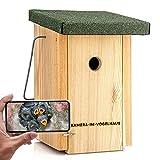 """Nistkasten mit WLAN-Kamera """"Bechstein"""" - Bequem Vögel bei der Brut beobachten (Android, iOS, HD-Auflösung, Nachtsicht, Ton, Videos aufnehmen)"""