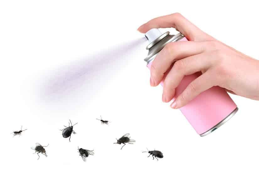 Ungezieferspray in der Bekämpfung von Plagen.