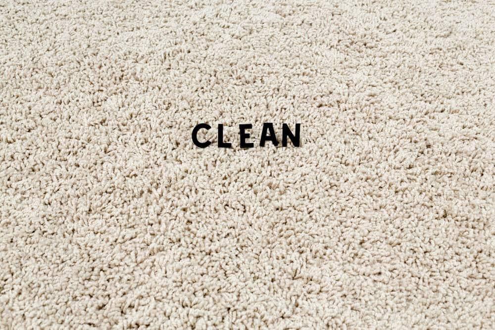 Teppichkehrer gegen Hundehaare