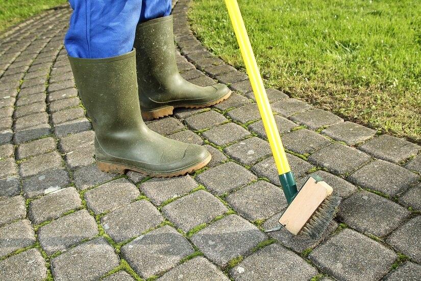 Pflastersteine reinigen und versiegeln: die Beseitigung von Moos gehört dazu