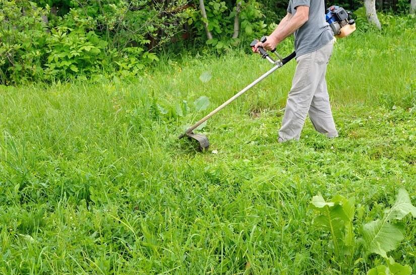 Ein Mann mäht den Rasen mit einem Benzin-Rasentrimmer
