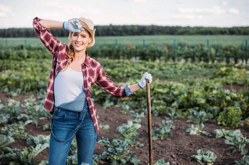 Die Wiedehopfhacke, vielfältig anwendbar im Garten und auf den Feldern