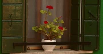 Außenfensterbank