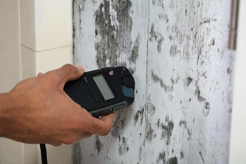 Hier wird die Fechtigkeit an einer Wand mit Schimmel gemessen